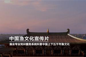 济南企业宣传片制作:中